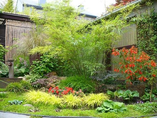 Jardin avec bambou excellent do it yourself tiquettes for Amenagement jardin avec bambou